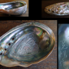 白蝶貝の細工物 竜の落とし子 在銘 置物 飾り物 s-500
