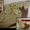 京焼 平安快楽造 雲錦盂 菓子鉢 茶道具 共箱 桜の大樹と紅葉 t-1300